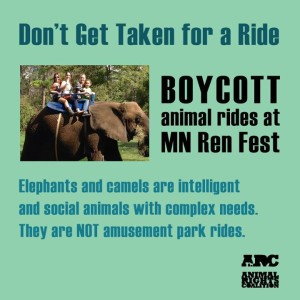 Boycott Ren Fest Exotic Animal Rides