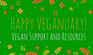 Veganuary-and-an-offer-of-support-smallery